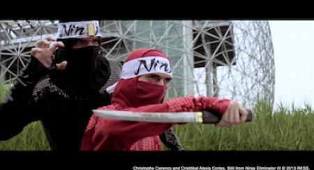 Ninja Eliminator III